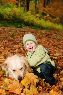 Little boy sitting in maple autumn leaves and smile. Outdoor portrait
