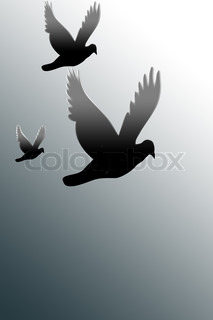 three doves