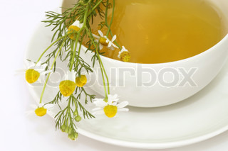 Herbal camomile tea on bright background