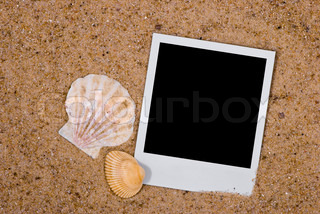 Photo frame with sea shells on sand background
