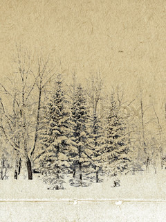 winter forest on grunge background