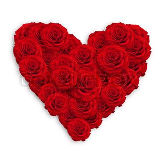friske røde roser i hjerte form over hvide