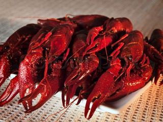 plate full of red boiled crawfishes