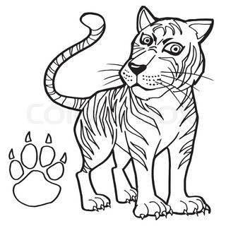 Image of tiger with paw print coloring page vector for Tiger paw coloring page