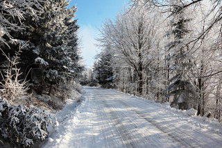 Winter fairy tale. Snow-covered winter wood and a wide ski track.