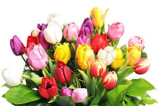 Billede af 'april, lyserød, grøn'