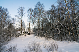 lonely house among the snow-covered winter forest