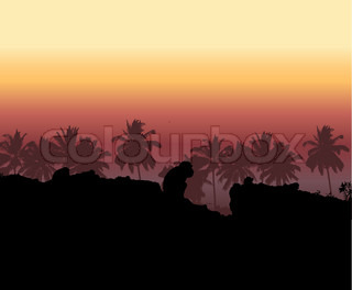 Tropical sunset, palm tree silhouette