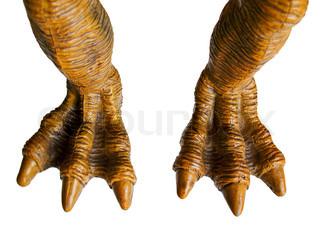 Monster toy or animal dinosaur spooky horror foot