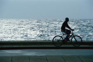 ©Laurence Mouton/AltoPress/Maxppp ; Man riding bicycle through waterside park