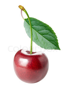 Ripe cherry with leaf isolated on white background.
