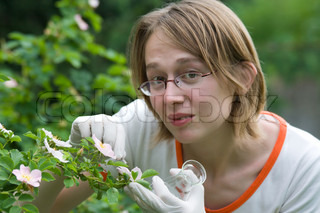 Scientist analyzing a new plant, and tacking his exams.