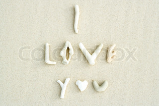 ©Laurence Mouton/AltoPress/Maxppp ; Coral pieces and seashell spelling the words