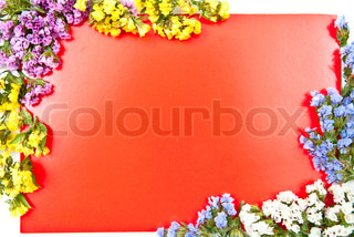 Red paper blank on white with flowers design