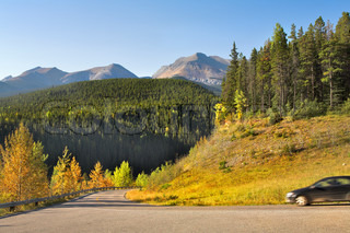 The car on road and trees with yellow and green foliage in mountain reserve