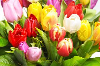 Billede af 'foråret, holiday, surprise'