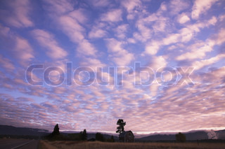 Pink clouds in the evening sky above the rural house near to road