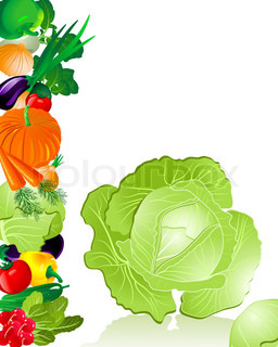 vegetables cabbage