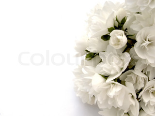 Billede af 'mødom, ægteskabelig, jasmin'
