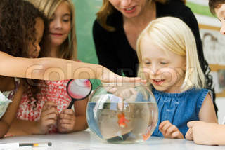 ?Mich?le Constantini/AltoPress/Maxppp ; Elementary teacher and students gathered around goldfish bowl, one girl sticking finger in water