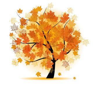 Vektor af 'efteråret, skov, rammer'