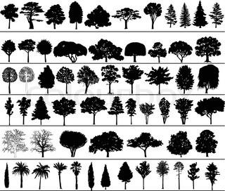 Sæt af sorte silhuetter af vektor træer