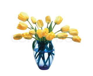 beautiful bouquet of yellow tulips in vase isolated on white background