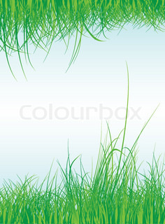 Grass frame with sky background, vector illustration