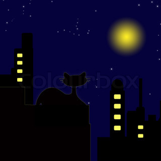 Cat on rooftop, at night with a starry night and full moon.