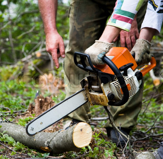 Arbejdstagere med Chainsaw In The Forest