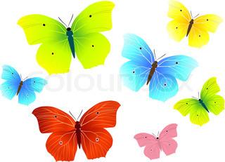 Grafiken von 'Schmetterling, vektor, unbebaut'
