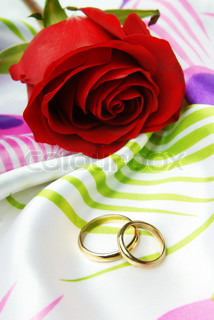 Photo of the one rose and two wedding rings of decoratic textile