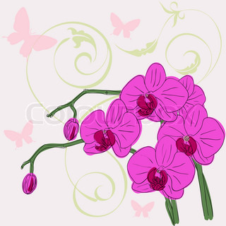 kvist blomstrende orkideer på en baggrund med sommerfugle