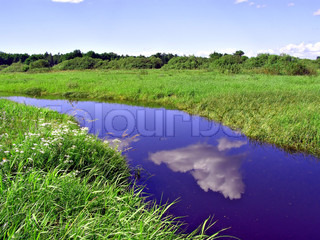 small river on yellow autumn field