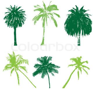 Vektor af 'træ, bagagerum, palmeblad'