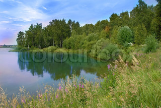 scenic lake by forest and dry grass summer landscape