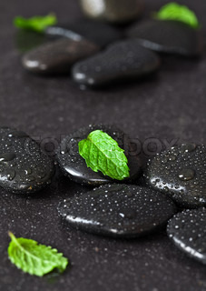 Group of black pebbles with rain drops and green fresh leafs