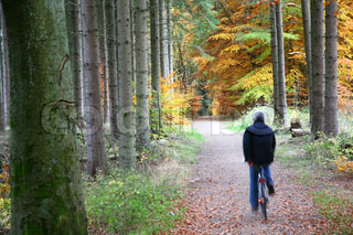 Autumn forest in the countryside  in Denmark, men on bike