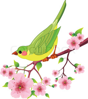 Cute fugl siddende på blomstre gren .