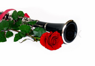 beautiful red rose and clarinet composition over white