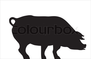 Vector of 'pig, a silhouette, meat'