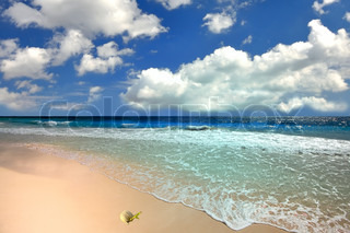 Blue sea and nice sky in the summer day