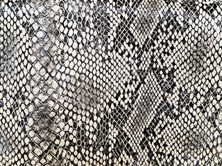 black and white background in snake pattern style
