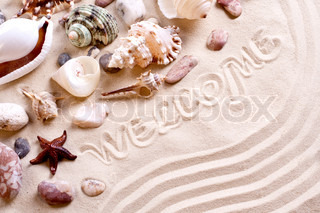 seashells in sand with text as a background