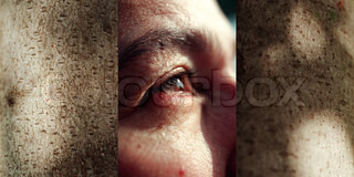 Triptych, adult's eye, close-up, between images of bark surface with shadows