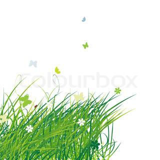 Grünes Feld mit Schmetterlingen , Sommer Hintergrund