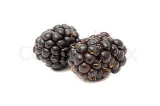 Image of 'dewberry, fruit, organic'