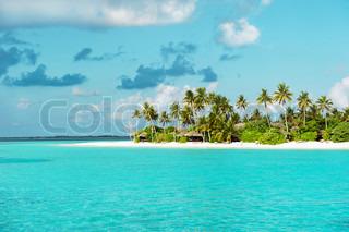 Tropiske hvide sandstrand med palmer