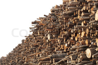 A stack of logs used as forest industry pulp wood