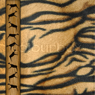 Background from a skin of a tiger with the roe on a tape